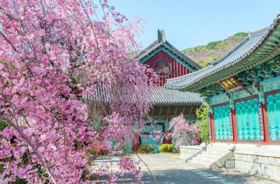 Gyeongbokgung Palace - South Korea