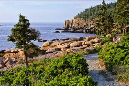 otter-cliff