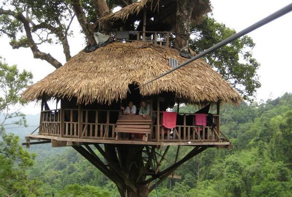 Bokeo treehouse