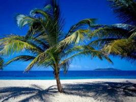 Saint Croix beach