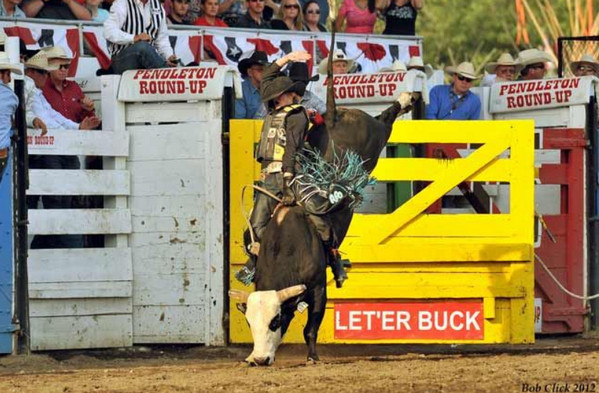 Pendleton, Oregon Round-Up bull riding