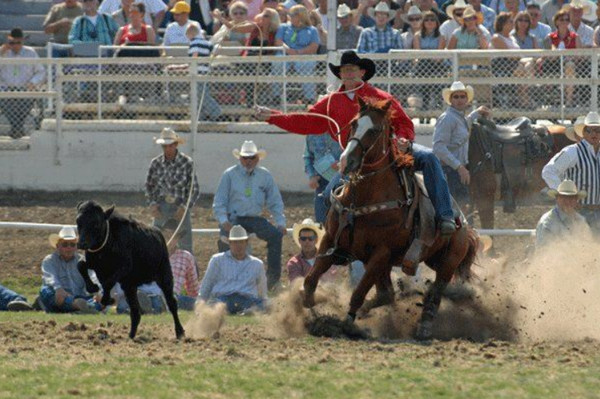Pendleton, Oregon Round-Up down roping